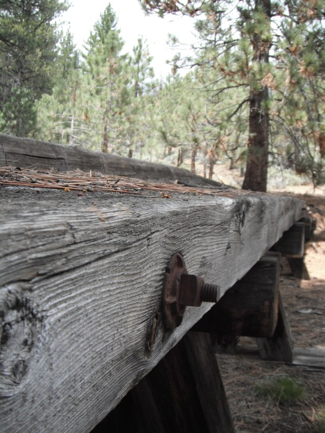I never did figure out what this logging (?) device was for. Frenchman's Lake, California.